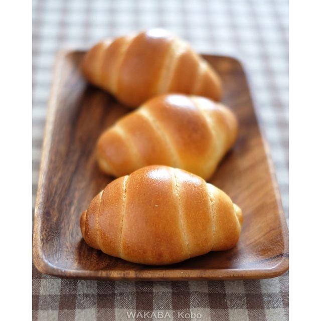 「バターロール」ホシノ酵母のバターロールはコクがあって、深みがあって、何とも言えない熟成された味わいです。